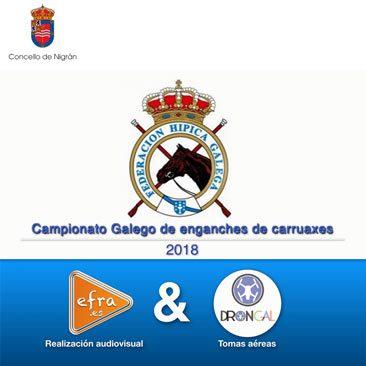 Campionato Galego de Enganche de Carruaxes 2018 Nigran Pontevedra
